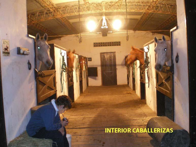 CASA CANCHA POLO BOXES OPENDOOR